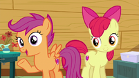 "Scootaloo ""you tried to help everypony around you"" S6E19"