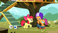Scootaloo returns S01E18.png