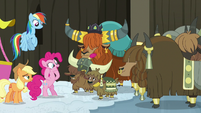 Yaks present Pinkie Pie with honorary yak horns S7E11