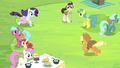 AJ and Rarity gallop toward each other S4E22.png