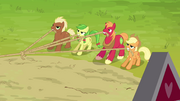 Applejack, Big McIntosh and two other ponies pulling the ropes S3E03