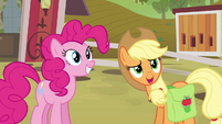 Applejack asking Big Mac about trip essentials S4E09