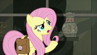 "Fluttershy ""did have a lot of artifacts"" S9E21"
