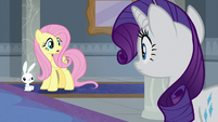 Fluttershy and Angel see Rarity-Ocellus S8E1