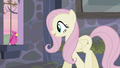 Fluttershy asking the bird for help S5E02.png