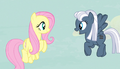 Night Glider bids welcome to Fluttershy S5E1.png