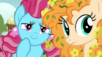 Pear Butter and Chiffon look at Bright Mac S7E13