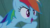 "Rainbow Dash ""they're all about me"" S7E16"