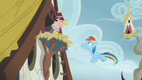 Rainbow Dash apologizing to the griffons S8E2