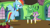 Rainbow Dash does not Approve S3E10