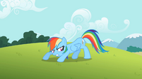 Rainbow Dash well S2E8