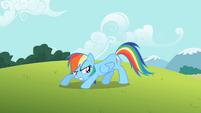 Rainbow Dash well S2E8