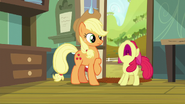 S05E17 Apple Bloom histeryzuje