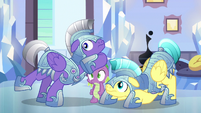Spike and royal guards hear Shining Armor S6E16