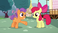 Tender Taps gives Apple Bloom her cue S6E4