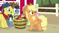 """Applejack """"friends are like family and whatnot"""" S7E14.png"""