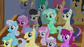 Audience of ponies S6E4.png