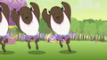 Buffalos dancing S2E02.png