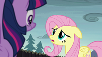 "Fluttershy ""if we solved the problem already"" S5E23"