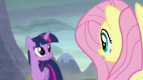 Fluttershy --they know what happened here!-- S5E23