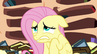 Fluttershy agrees to do the mission S3E05
