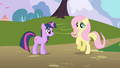 Fluttershy alights on the ground S1E11.png