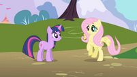 Fluttershy alights on the ground S1E11