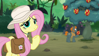Fluttershy looks grateful at Caballeron S9E21