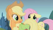 Fluttershy se escondendo em Applejack S01E07