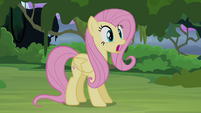 Fluttershy surprised S4E03