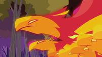 Phoenixes close-up S2E21