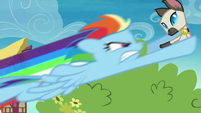 Rainbow Dash picking up a cat S8E5
