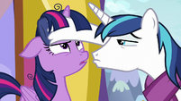 Shining Armor touching Twilight's forehead MLPBGE