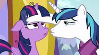 Shining Armor touching Twilight's forehead MLPBGE