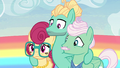 Zephyr Breeze mildly stunned S6E11.png