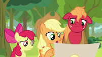 "Applejack ""is this right?"" S9E10"