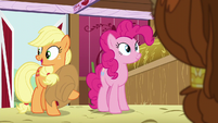 Applejack -in the barn during your visit- S5E11