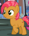 Babs Seed ID MLP Facebook.png