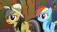 Daring Do --right now we have to-- S6E13