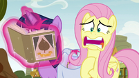 "Fluttershy ""led to a town-wide panic!"" S9E22"