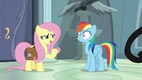 "Fluttershy ""why you haven't heard of it"" S9E21"