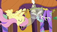 Fluttershy catches Discord with her net S7E12