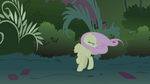Fluttershy cries -Wait!- when Rainbow Dash zooms by S1E02