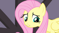 "Fluttershy sad about her ""last performance"" S4E14.png"