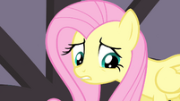 Fluttershy sad about her -last performance- S4E14