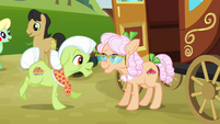 Granny Smith meets Apple Rose S3E08