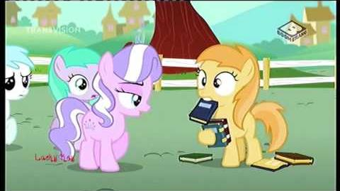 My Little Pony Friendship is Magic - The Vote Indonesian