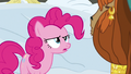 "Pinkie Pie ""you spent the whole winter in a hole?"" S7E11.png"