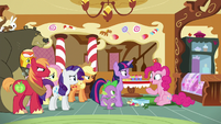 Pinkie Pie --but pranks are so much fun!-- S6E15