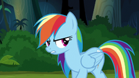 "Rainbow Dash ""if I just leave you in the jungle"" S6E13"